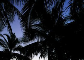 maledivy-hotel-furaveri-island-resort-spa-019.jpg