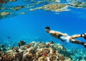 maledivy-hotel-furaveri-island-resort-spa-049.jpg