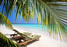 maledivy-hotel-furaveri-island-resort-spa-176.jpg