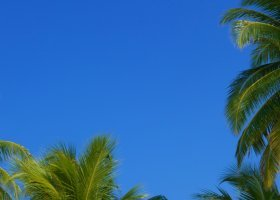 maledivy-hotel-kuredu-island-resort-136.jpeg
