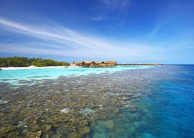 maledivy-hotel-lily-beach-resort-058.jpg