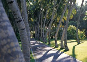 maledivy-hotel-sun-island-resort-012.jpg